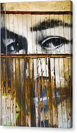Acrylic Print featuring the photograph The Walls Have Eyes by Skip Hunt