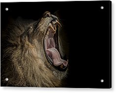 The War Cry Acrylic Print by Paul Neville
