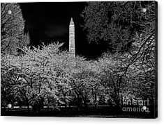 The Washington Monument At Night Acrylic Print by Lois Bryan