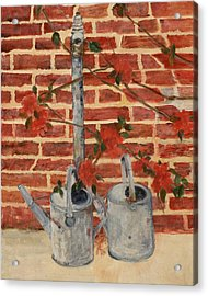 The Watering Cans Acrylic Print by Betty Stevens