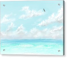 Acrylic Print featuring the digital art The Waves And Bird by Darren Cannell