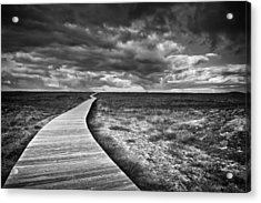 The Way Acrylic Print by Santiago Pascual Buye
