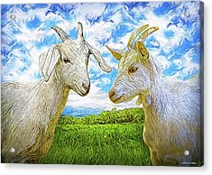The Whispers Of Goats Acrylic Print