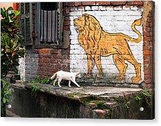 The White Cat Acrylic Print