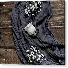 Acrylic Print featuring the photograph The White Rose by Kim Hojnacki