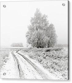The White Silence. Horytsya, 2014. Acrylic Print