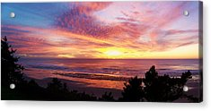 The Whole Sunset Acrylic Print by Angi Parks