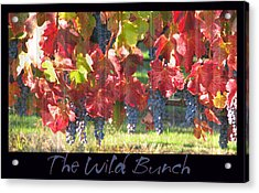 The Wild Bunch Acrylic Print