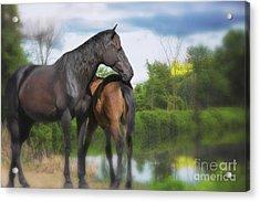 The Wild Horses Of La Chura Trail Acrylic Print