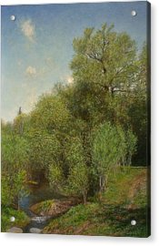 The Willow Patch Acrylic Print by Wayne Daniels
