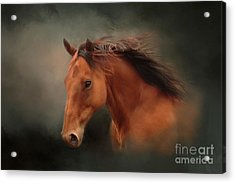 The Wind Of Heaven - Horse Art Acrylic Print by Michelle Wrighton