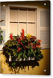 The Window Box Acrylic Print