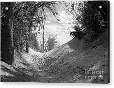 The Windy Path Acrylic Print