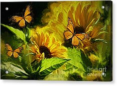 The Wings Of Transformation Acrylic Print by Tina  LeCour