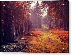 The Winter Path  Acrylic Print