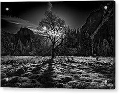 The Winter Spirit Acrylic Print by Simon Chenglu