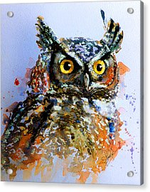 The Wise Old Owl Acrylic Print by Steven Ponsford