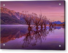 The Witches Of Glenorchy Pt 2 Acrylic Print