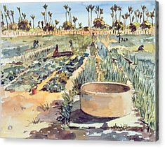 The Wome's Garden  Senegal West Africa Acrylic Print