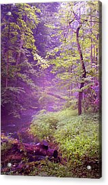 The Wonder Of Nature  Two Acrylic Print
