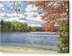 The Wonders Of Walden Acrylic Print