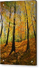 The Wood For The Trees Acrylic Print by Lizzy Forrester