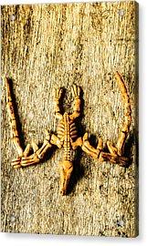 The Wooden Pterosaur Acrylic Print