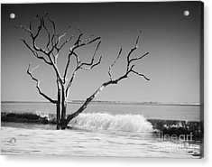 Acrylic Print featuring the photograph The World Is Coming Down II by Dana DiPasquale
