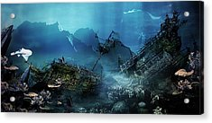 The Wreck Acrylic Print by Mary Hood