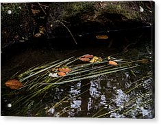 Acrylic Print featuring the photograph The Year Passes Gently by Odd Jeppesen