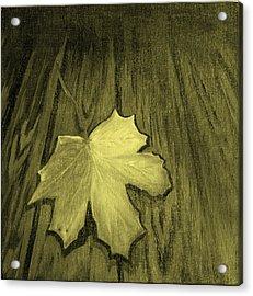 The Yellow Leaf Acrylic Print by Ninna