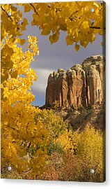 The Yellow Leaves Of Fall Frame A Rock Acrylic Print by Ralph Lee Hopkins