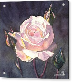 Acrylic Print featuring the painting Thea's Rose by Sandra Phryce-Jones