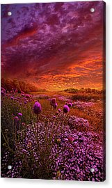 Then Ever Been Lifted Before Acrylic Print by Phil Koch