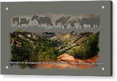 Theodore Roosevelt National Park Acrylic Print