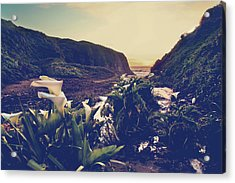 There Is Harmony Acrylic Print by Laurie Search
