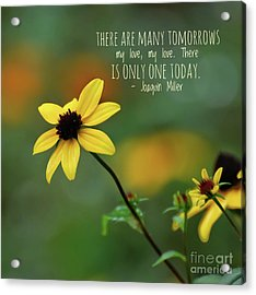 Acrylic Print featuring the photograph There Is Only One Today by Kerri Farley