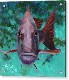 Acrylic Print featuring the painting There's Something Fishy Going On Here by Billie Colson