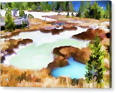 Thermal Pools, West Thumb Ynp Acrylic Print by Greg Sigrist