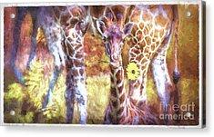 The Whimsical Giraffe  Acrylic Print
