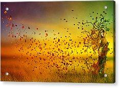 They Call Me Fall Acrylic Print by Mary Hood