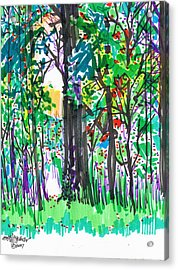 Acrylic Print featuring the drawing Thicket by Seth Weaver