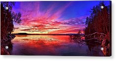 Thin Ice 1 Acrylic Print by ABeautifulSky Photography