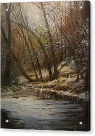 Thin Ice Acrylic Print by Tom Shropshire