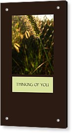 Thinking Of You Acrylic Print by Mary Ellen Frazee