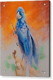 Acrylic Print featuring the painting This Bird Had Flown by Joe Winkler