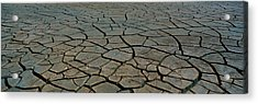 This Is A Pattern In Dry, Cracked Mud Acrylic Print by Panoramic Images