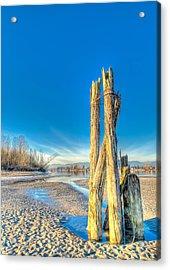 This Is British Columbia No.43 - Frost On The Fraser Acrylic Print by Paul W Sharpe Aka Wizard of Wonders