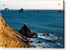 This Is Oregon State 1 - The Oregon Coast Acrylic Print by Paul W Sharpe Aka Wizard of Wonders