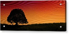 This Is The Philippines No.11 - Mango Tree Sunset Acrylic Print by Paul W Sharpe Aka Wizard of Wonders